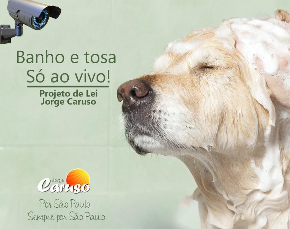 caruso2